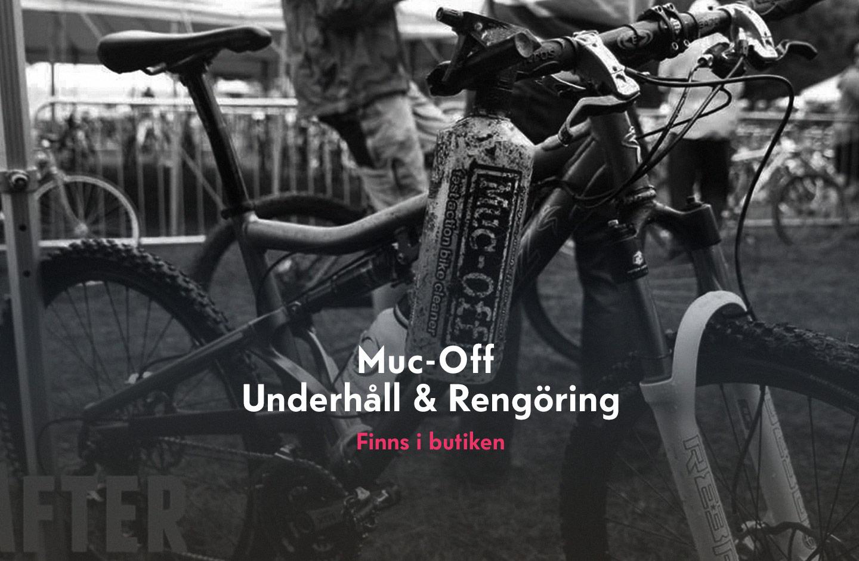 News-Mucoff